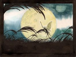 The Moth and the Moon 2 by phraxos