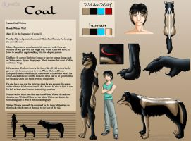 Coal's reference by FlyingPony