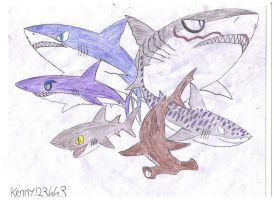 Hungry Shark Evolution: The Sharks by Kenny123663