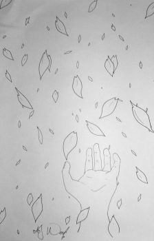 Raining Sakura Sketch by sketched1