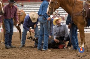 Steer injury by FireAwayphoto