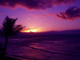 purple sunset in hawaii by SartoriInTangier