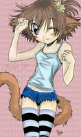 Neko Girl -Complete and gift- by Nisshoku-art