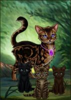 cats by Blackpaw1234