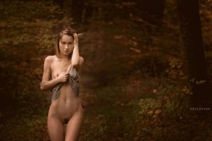 Autumn by artofdan70