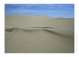 Lost In The Sand Dunes I by Astraea-photography