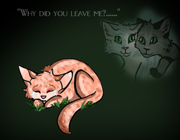 Why did you leave me? by collie-rado