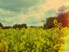late spring by PeteHamilton