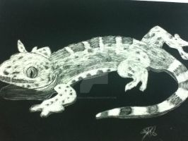 Reptilical Scratchboard by Tigedelic-Emma