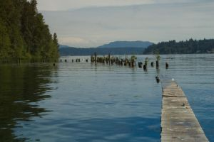 Old, Sinking Dock on Lake by happeningstock