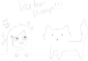 Dexter x Molly 2 Dressup!!!! by nicolistic