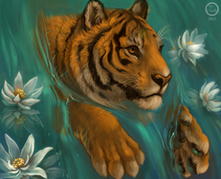 Tiger lotus by FlashW