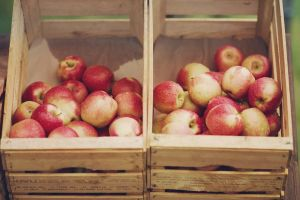 Pretty Apples by Freacore