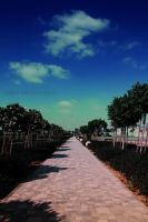 road to somewhere by amirajuli