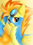 Spitfire of the WB by pikashoe90
