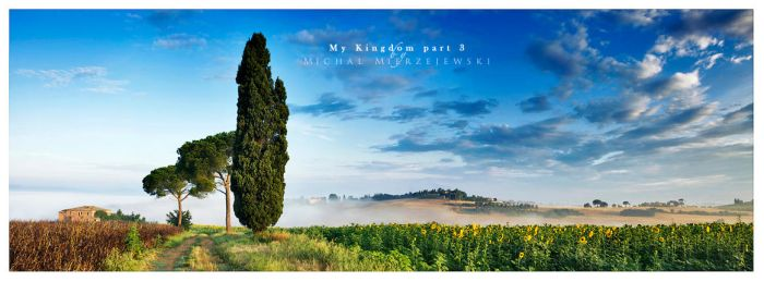 My Kingdom part 3 by werol