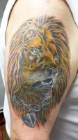 LION COVER UP (3) by Ashtonbkeje