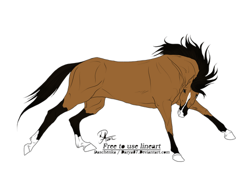 WC101's Cowboy by FallingStarStable