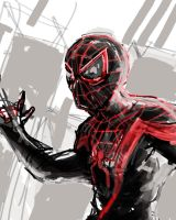dsc Ultimate Spider-Man by videsh