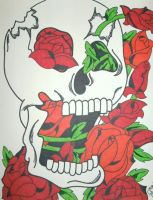 Cracked Skull and Roses by ToniTiger415