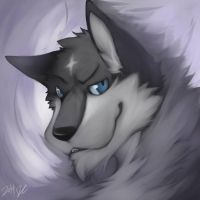 Wing Wolf face 3 by wingwolf88