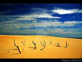 Desert Dead Wood by Rems84