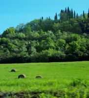 Toscano, Italia by JAHpants