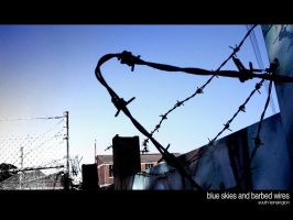 Blue Skies and Barbed Wires by airetosE