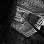 In the cage by ivica-r