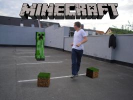 Minecraft - In Real Life! by Lowlandet