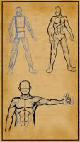 Anatomy reference: Men by Master-sweez
