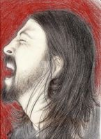 Rock and Grohl by Zaphky