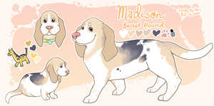 Madison's New Ref by cakes-cabana