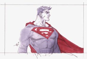 fdf superman by Alex0wens