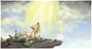 Sunning in the clouds by Lionstrikewhiskers
