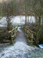 Wooden Bridge by Jantiff-Stocks