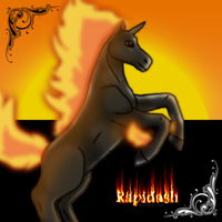 Rapidash to skyqeen by RIOPerla