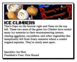 Ice climber facts by Icey-Bros