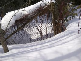 Winter fence project by gabbyred