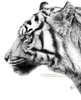 Like a Tiger Without Whiskers by rosiesinner