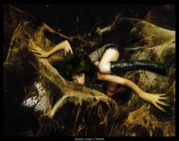 Along came a Spider by KirstenLane