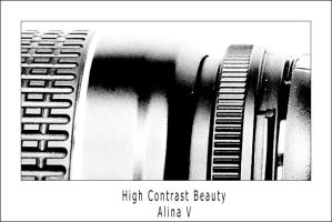 High Contrast Beauty by hesitation
