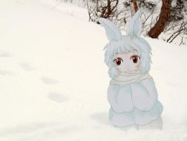 Paper Child Snow Rabbit by ryu-yo