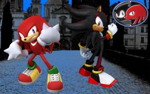 Shadow and Knuckles by MegaRed