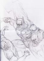 Batman DC new 52 jim lee 3 by dushans