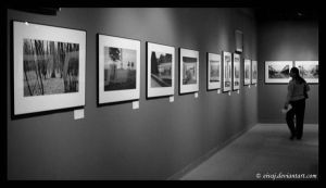 In the Gallery by eivaj