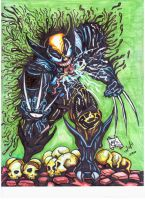WOLVENOM by elchacal2-2