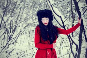 Russian winter IV by DarkVenusPersephonae