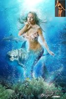 Dolphin Mermaid by Tommy-T-Designs