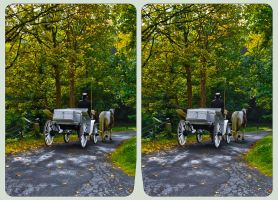Carriage ride into the woods 3D ::: HDR Cross-Eye by zour
